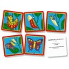 Sequence of Life Cards Set 15 (PK)